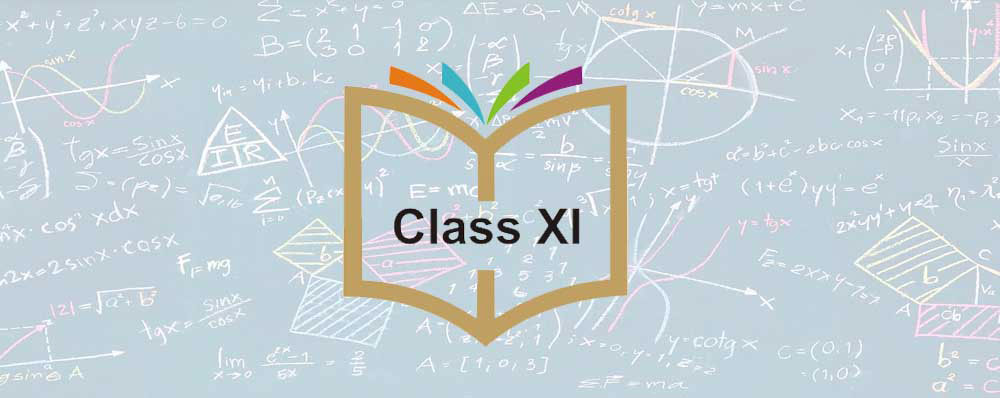 Classroom Training for Class 11th in Pune